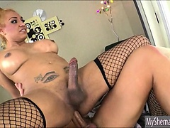 Busty shemale gets a rimjob and rides on cock anal for cum