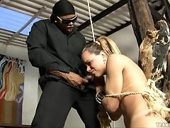 Tied up blonde tranny has her gorgeous ass fingered and spanked by a black...