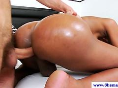 Busty shemale tranny Jennifer Hills anal plowed